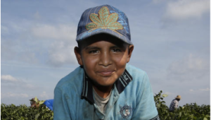 Jesus Vasquez, 11 CHILE PEPPER picker Started farm work age 7